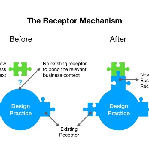 Receptor_Mechanism
