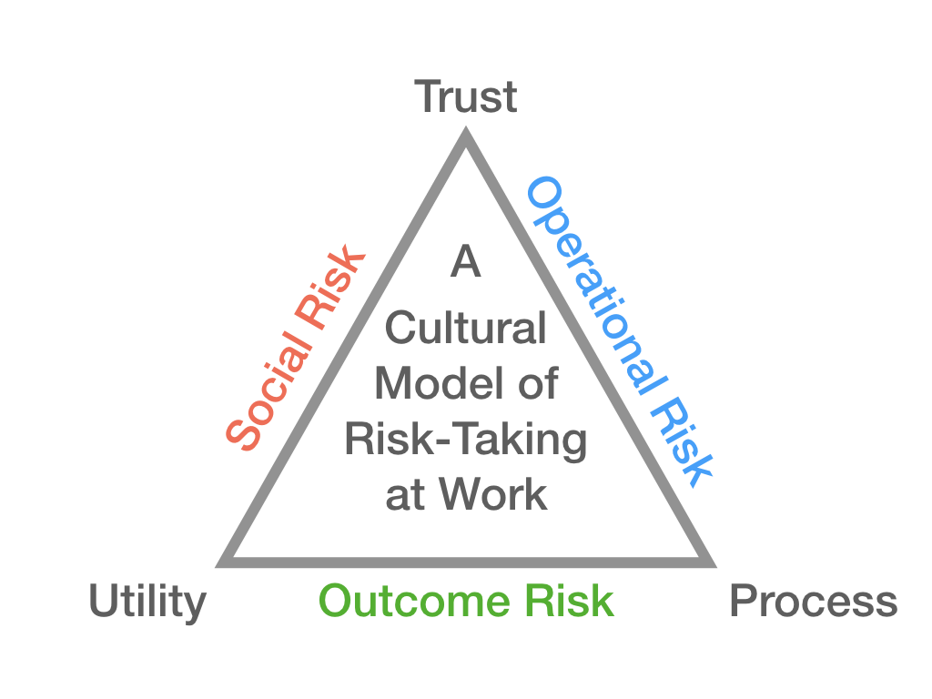 Figure 1: A cultural model of risk-taking at work